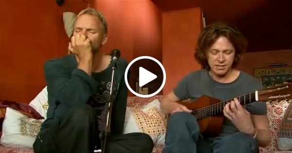 Sting – Shape of My Heart, акустическое исполнение в домашней обстановке